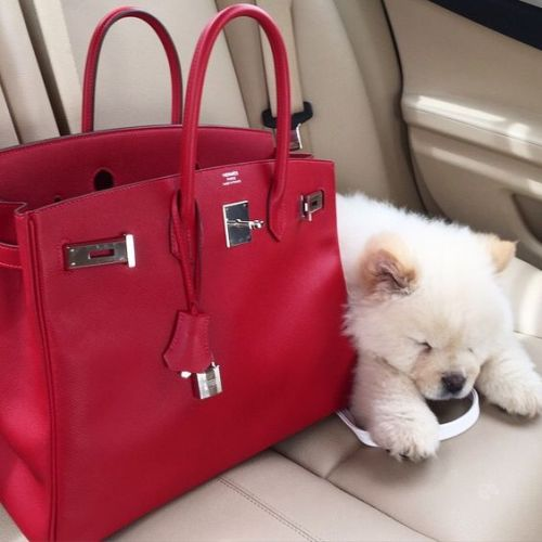 red hermes bag