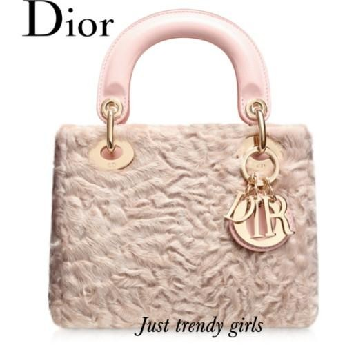 Dior Blush Leather
