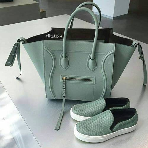 celine bag in amazing color