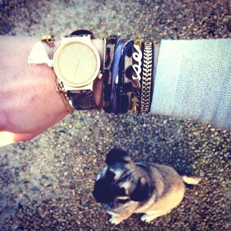 arm candy 14
