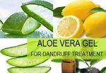 Aloe Vera different uses and benefits