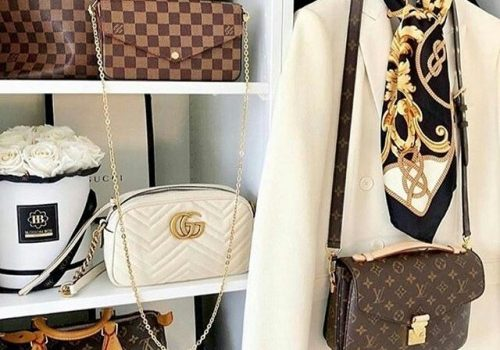 Louis Vuitton new trendy classic bags